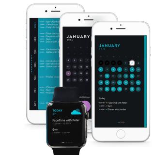 Calendar Apps Moleskin Timepage