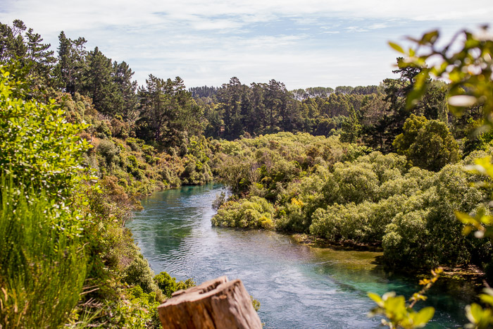 Waikato River, Taupo New Zealand
